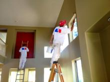 Professional Paint Contractor
